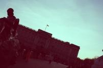 Buckingham palacee (3)