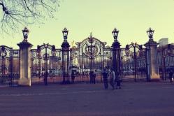 Buckingham palacee (5)