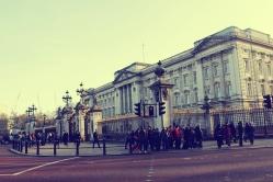 Buckingham palacee (7)